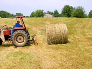 moving round bales 3