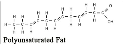 Polyunsaturated Fat Food Recipes