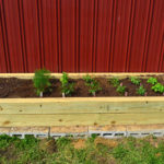 Building a Raised Herb Garden