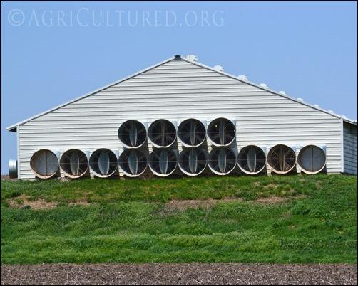 Barn Exhaust Fans : Ventilation in turkey barns