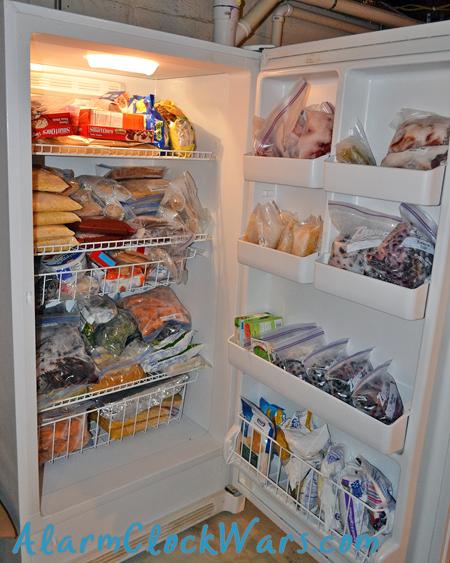 upright freezer inside before