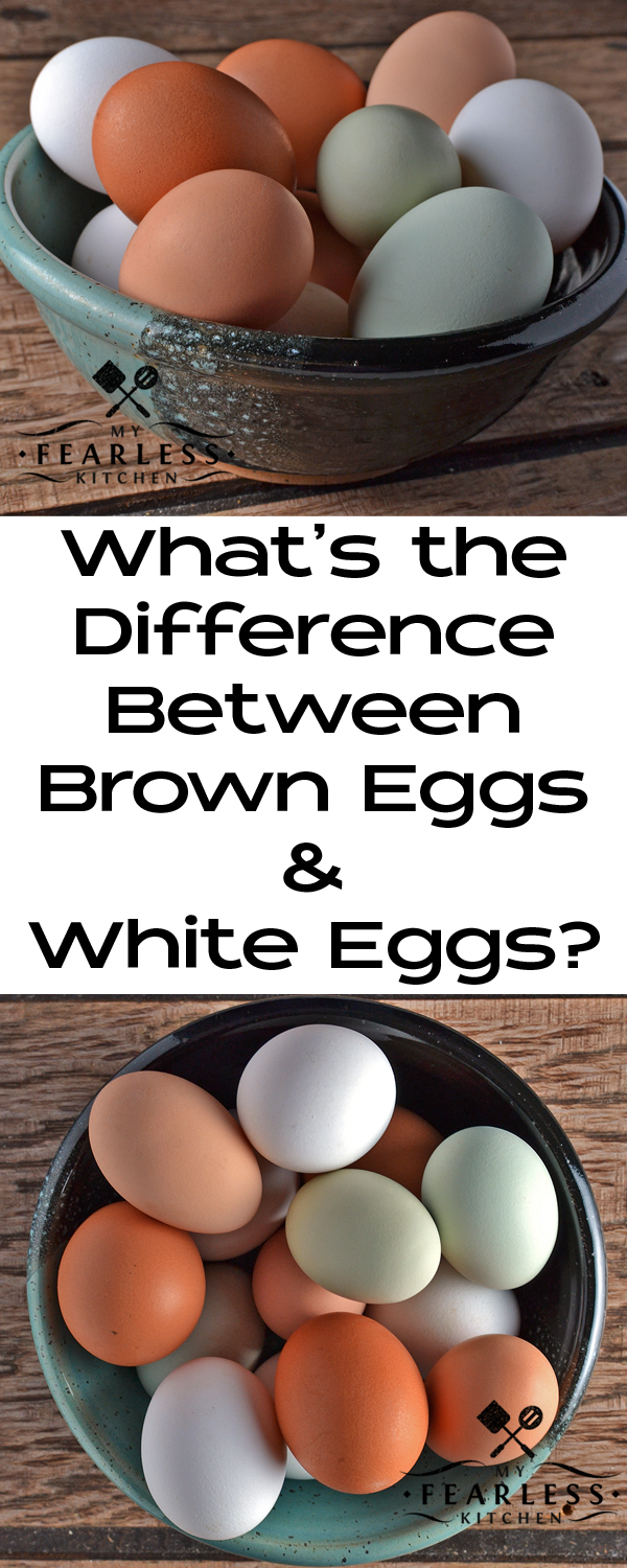 What's the Difference Between Brown Eggs & White Eggs? from My Fearless Kitchen. There is a difference between brown and white eggs. It's probably not what you think, and you can't tell after you open the egg.