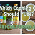 Which Cooking Oil Should I Use?