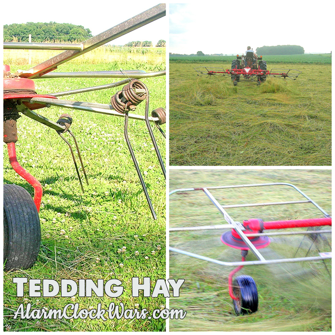 Hay needs time to dry after it is mowed but before it can be baled. Tedding the hay is one way to help it dry.