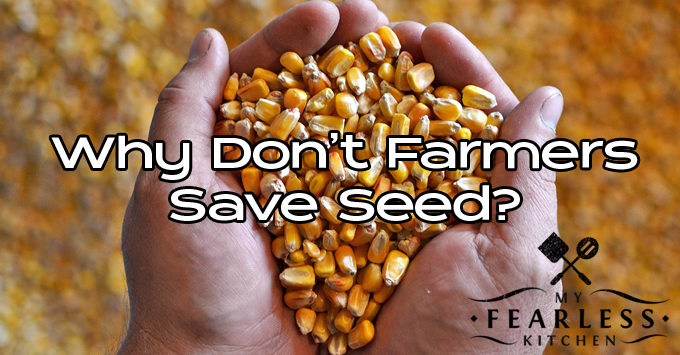 why-dont-farmers-save-seed-featured